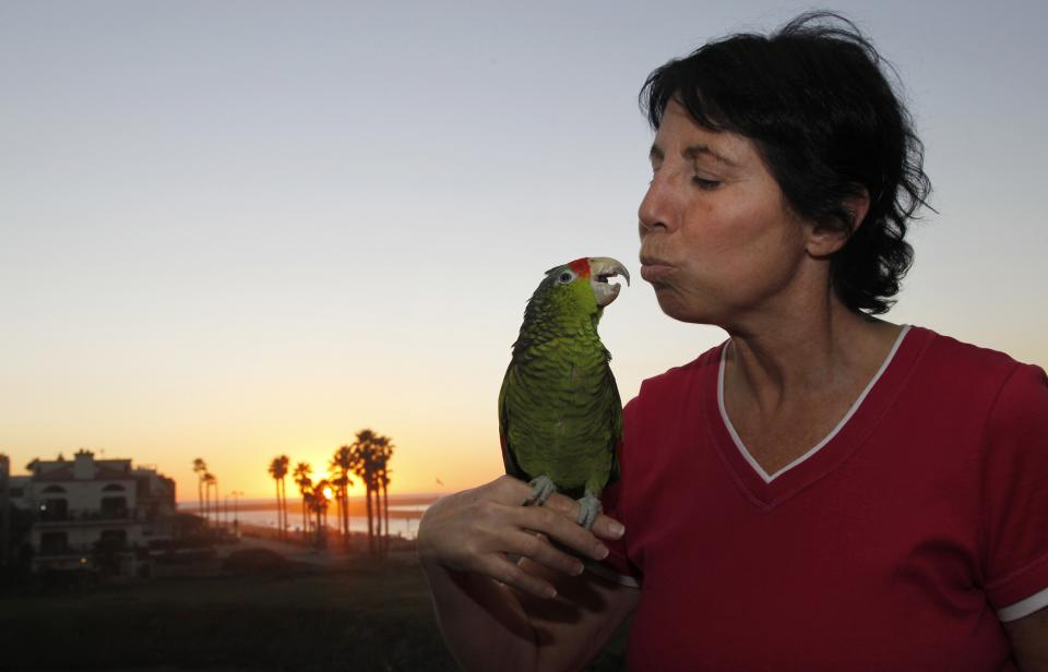 "In this photo taken on Tuesday, Feb. 8, 2012, Mira Tweti, Executive Director, National Parrot Care & Cage Xchange, kisses her rescue parrot named ""Liberty,"" in her apartment in the Marina Del Rey area of Los Angeles. (AP Photo/Damian Dovarganes)"