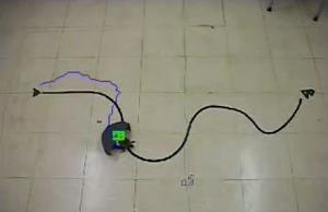 Live Turtle Bot Maneuvered With Remote Control