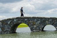England&#39;s Lee Westwood walks over the bridge from seventh hole to eight tee, during the third day at the Nordea Masters golf competition, at the Bro Hof golf club in Stockholm