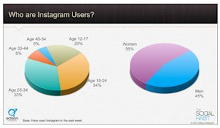 Pinterest Versus Instagram: Which One is Better? image who are instagram users