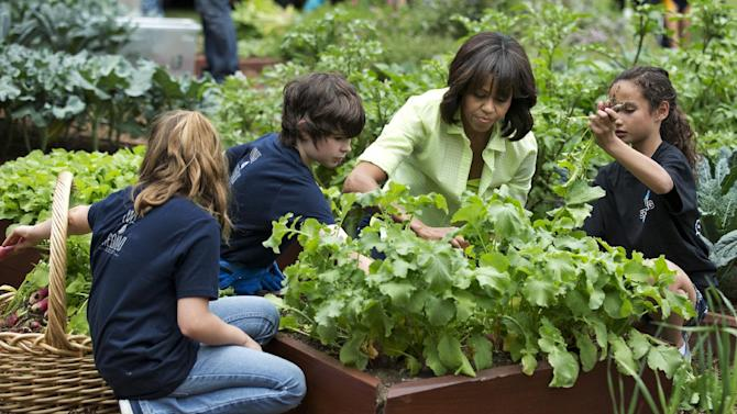 """FILE - In this May 28, 2013 file photo, First lady Michelle Obama joins school children from Long Beach Island Grade School in Ship Bottom, N.J., from left, and second from left: Jordan Leeds, age 11, Joshua Styler-Tracy, age 11, and Madisyn Goias, age 10, to harvest the summer crop from the White House kitchen garden, at the White House in Washington. Nearing a milestone birthday, Michelle Obama describes herself as """"50 and fabulous."""" She's celebrating already and a big birthday bash is in the works. (AP Photo/Manuel Balce Ceneta)"""