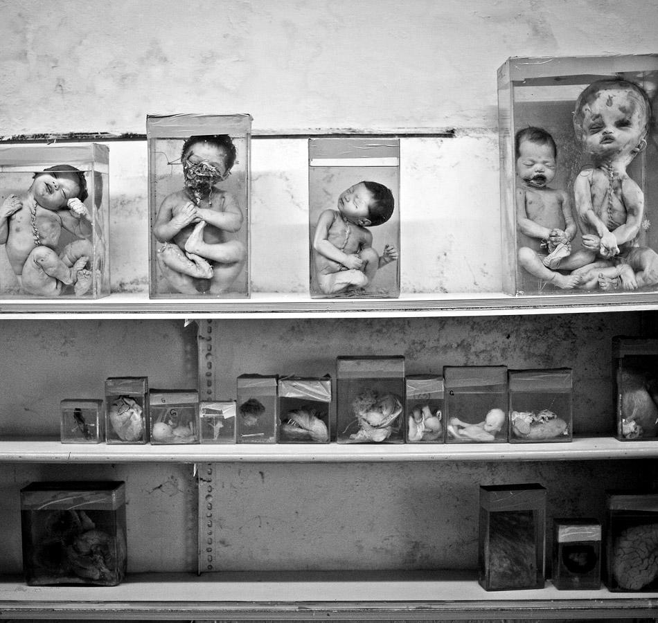 Bhopal gas tragedy: 28 years on