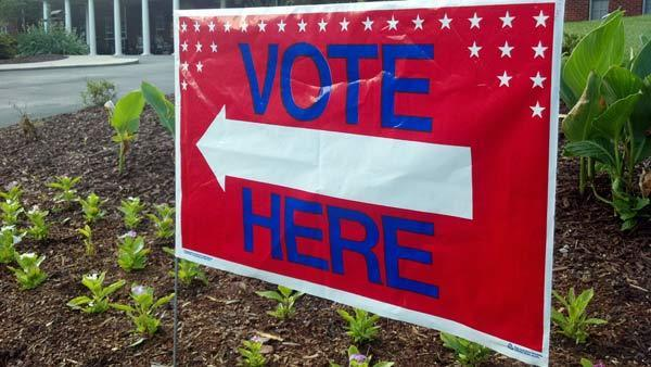Republicans to press ahead with voter ID law