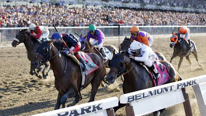 Tonalist (11), ridden by jockey Joel Rosario, edges out Commissioner (8), with Javier Castellano up, to win the 146th running of the Belmont Stakes horse race, Saturday, June 7, 2014, in Elmont, N.Y. California Chrome (2), the Kentucky Derby and Preakness Stakes winner and ridden by Victor Espinoza, finished fourth. (AP Photo/Matt Slocum)