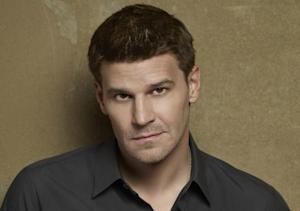 DirecTV Comes Full Circle With David Boreanaz, Kate Walsh, Julian McMahon and More