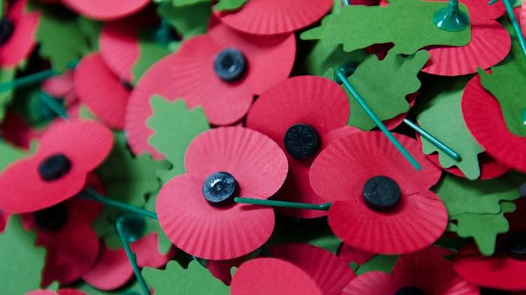 A pile of the iconic red emblem of the British Legion's annual poppy appeal is seen at the company headquarters in Richmond, London on November 7, 2012