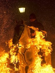 "A horseman jumps over a bonfire at the Saint Anthony festival in Spain's San Bartolome de Pinares on Wednesday. A parade of horses leaped over piles of branches, braving flames that danced meters (yards) high in the ""purification"" rite held in this town about 100 kilometres (60 miles) northwest of Madrid"