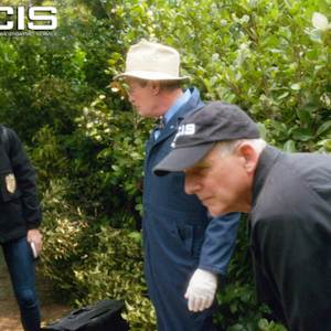 NCIS - It's For You