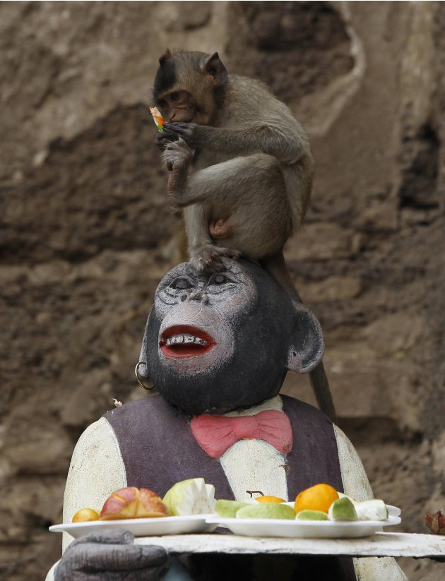 A monkey eats fruits as it sits on a monkey sculpture during the Monkey Buffet Festival, in front of the Pra Prang Sam Yot temple in Lopburi province