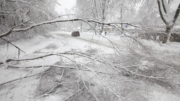 A downed tree on Old Middleton Road had what little traffic there was down to one eastbound lane in Madison, Wis., Thursday afternoon, Dec. 20, 2012. (AP Photo/Wisconsin State Journal, M.P. King)