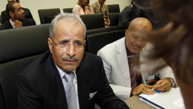 United Arab Emirates' Minister of Energy Mohamed bin Dhaen Al Hamli speaks to journalists prior to the start of the meeting of the Organization of the Petroleum Exporting Countries, OPEC, at their headquarters in Vienna, Austria, on Thursday, June 14, 2012. The meeting of the 12 oil ministers of the OPEC focuses on price and production targets. (AP Photo/Ronald Zak)