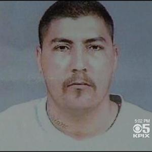 Man Sought After Allegedly Stealing Puppy At Gunpoint In San Jose