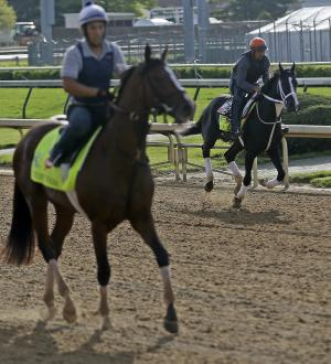 Kentucky Derby entrant Black Onyx and Normandy Invasion workout at Churchill Downs Thursday, May 2, 2013, in Louisville, Ky. Saturday will be the 139th running of the Kentucky Derby. (AP Photo/Morry Gash)