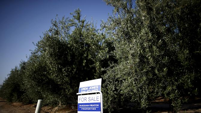 Farm with olive trees is seen for sale in Woodlake