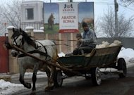A horse-drawn cart passes by the entrance of &quot;Doly-Com&quot; abattoir, one of the two Romanian companies exporting horse meat to EU countries, in Roma, 450km north from Bucharest, on February 12, 2013. Romania&#39;s Agriculture Minister Daniel Constantin insisted Wednesday that &quot;all the horsemeat provided by the Romanian companies that was placed on the EU market was correctly labelled.&quot;