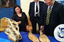 Disputed Dino Fossils Formally Returned to Mongolia