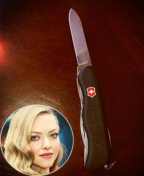 Amanda Seyfried Accidentally Brings Swiss Army Knife on Plane, Tweets to TSA