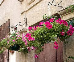 Hang Up Hanging Planters