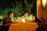 Bali&#39;s unique dining experiences