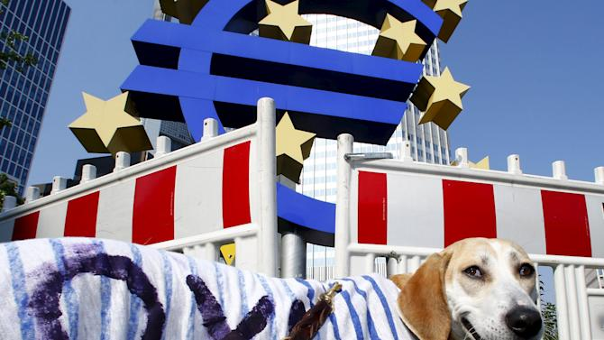 A dog is pictured during a Blockupy demonstration at the former headquarters of the European Central Bank (ECB) in Frankfurt