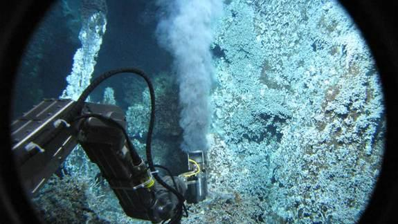 Extreme Earth Microbes Pave Way for Discovery of Alien Life