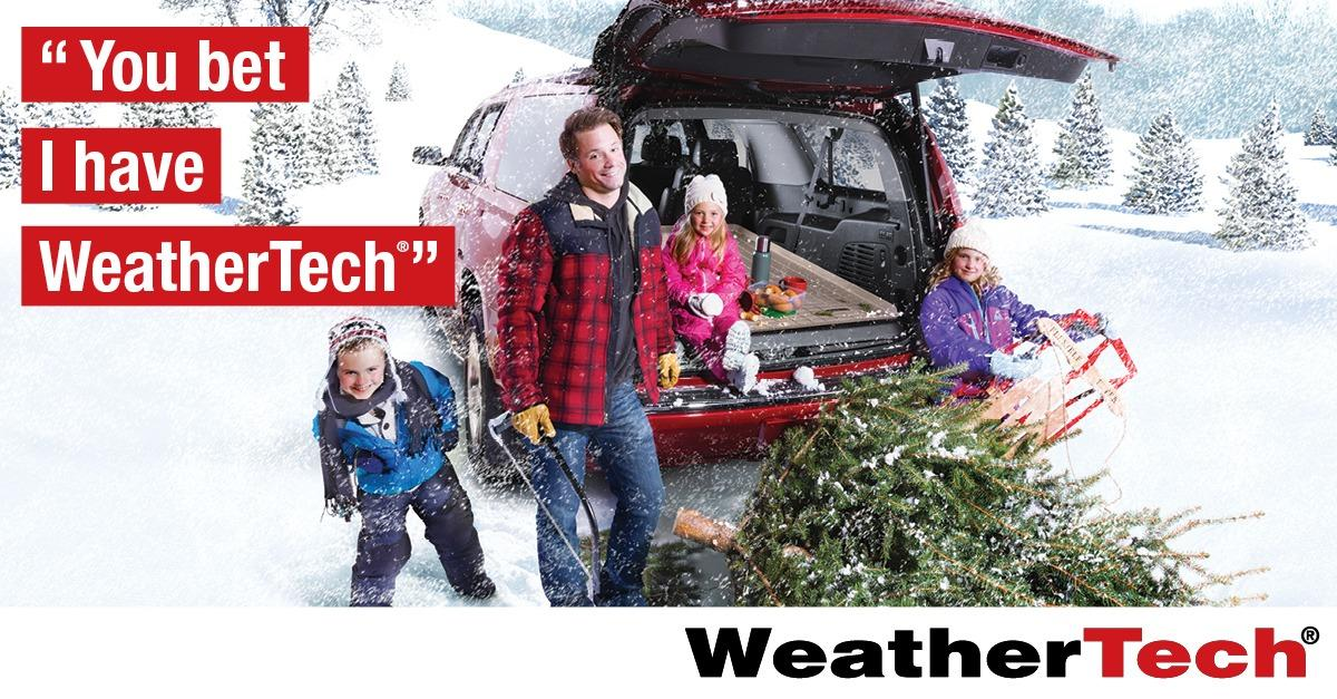 All-Weather Floor Mats: Protects Your Vehicle