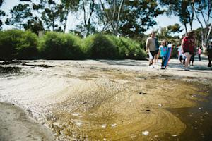 When Hitting the Beach, Stay Alert for Sewage (Op-Ed)