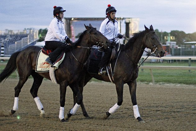 Kentucky Derby winner Orb, left, with exercise rider Jenn Patterson aboard, is led to the track by Anna Martinovsky on a pony for an early morning gallop at Pimlico Race Course Saturday, May 18, 2013 
