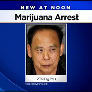 Man Arrested In Illegal Marijuana Grow After House Catches Fire