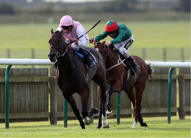 Horse Racing - The Cambridgeshire Meeting 2013 - Day One - Newmarket Racecourse