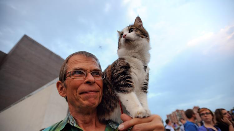 "Leroy Bergstrom of Maple Plain, Minn. arrives with his cat Maestro before the Walker Art Center's first ""Internet Cat Video Film Festival,"" showcasing the best of cat films on the Internet in Minneapolis Thursday Aug. 30, 2012. The Walker Art Center in Minneapolis held its first-ever online cat video festival, a compilation of silly cat clips that have become an Internet phenomenon, attracting millions of viewers for some of the videos. (AP Photo/Craig Lassig)"