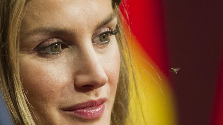 An insect flies near Spain's Princess Letizia during a photo call for the Prince of Asturias awards in Oviedo, northern Spain, Friday Oct. 26, 2012. Spain's prestigious Asturias prize ceremony, presented by Crown Prince Felipe and granted each year in various categories will take place later Friday.(AP Photo/Juan Manuel Serrano)
