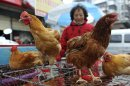 A vendor waits for customers near chicken cages at a market in Fuyang city, in central China's Anhui province, Sunday, March 31, 2013. Two Shanghai men have died from a lesser-known type of bird flu in the first known human deaths from the strain, and Chinese authorities said Sunday that it wasn't clear how they were infected, but that there was no evidence of human-to-human transmission. A third person, a woman in the nearby province of Anhui, also contracted the H7N9 strain of bird flu and was in critical condition, China's National Health and Family Planning Commission said in a report on its website. (AP Photo) CHINA OUT
