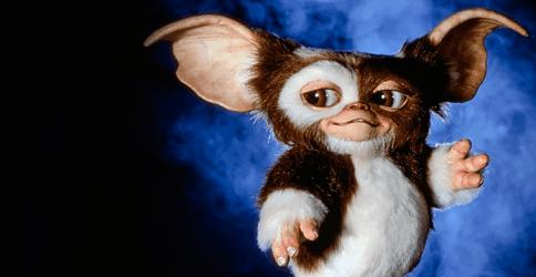 Zach Galligan: The Gremlins return will not take the form of a reboot