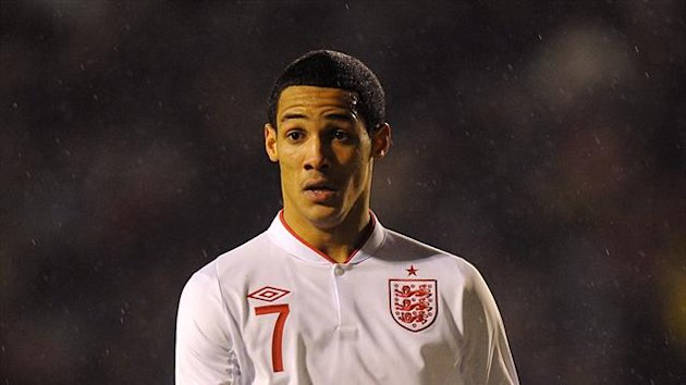The FA has appealed on behalf of Tom Ince, pictured, and Steven Caulker