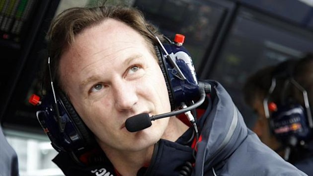 Christian Horner (Reuters)