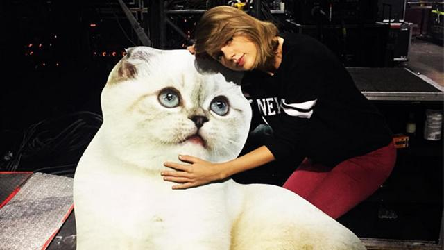 Taylor Swift's 50 Most Important Instagrams to Celebrate Her 50 Million Followers