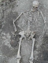 DNA taken from ancient European skeletons reveals that the genetic makeup of Europe mysteriously transformed about 4,500 years ago, new research suggests. Here, a skeleton, not used in the study, but from the same time period, that was excavate