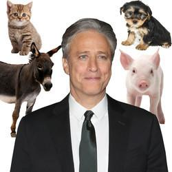 Jon Stewart Reportedly Bought A Farm In New Jersey For Homeless Animals