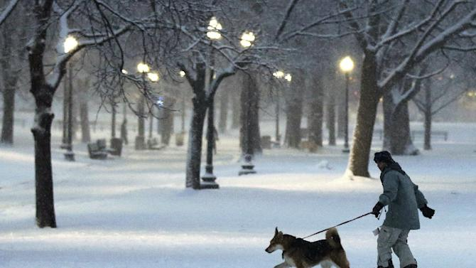 "A dog pulls a snowboarder through the Boston Common in Boston, Friday, Feb. 8, 2013. Mass. Gov. Deval Patrick declared a state of emergency Friday and banned travel on roads as of 4 p.m. as a blizzard that could bring nearly 3 feet of snow to the region began to intensify. As the storm gains strength, it will bring ""extremely dangerous conditions"" with bands of snow dropping up to 2 to 3 inches per hour at the height of the blizzard, Patrick said. (AP Photo/Charles Krupa)"