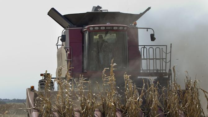 A combine is surrounded by dust at it finishes harvesting a row of corn near Bennington, Neb., Thursday, Sept. 6, 2012. The remnants of Hurricane Isaac dumped heavy rain on some key Midwest farming states that dramatically lessened the drought there, but conditions worsened in two of the nation's biggest corn producers, Iowa and Nebraska, which missed out on the badly needed moisture, according to a drought report released Thursday. (AP Photo/Nati Harnik)
