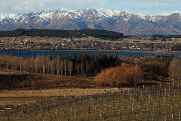 Otago New Zealand wine re…