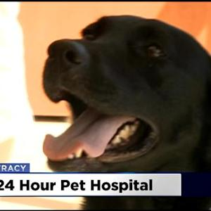 24-Hour Pet Hospital Opens In Tracy
