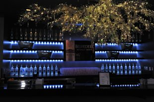 Belvedere Vodka at Espys 2012