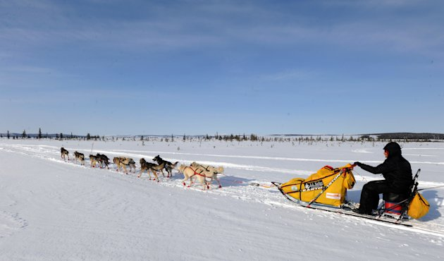 Mitch Seavey drives his dog team towards Nome, Alaska, after leaving the White Mountain checkpoint, Tuesday, March 12, 2013, during the Iditarod Trail Sled Dog Race. (AP Photo/The Anchorage Daily News