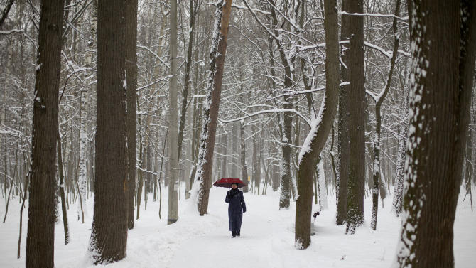 Moscow blanketed by major early snowfall