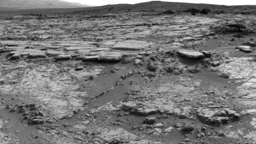 Mars Rover Curiosity Finds Martian 'Flower' and Snake-Like Rock