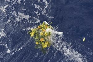 A wreath from the fishermen of Lampedusa is thrown…