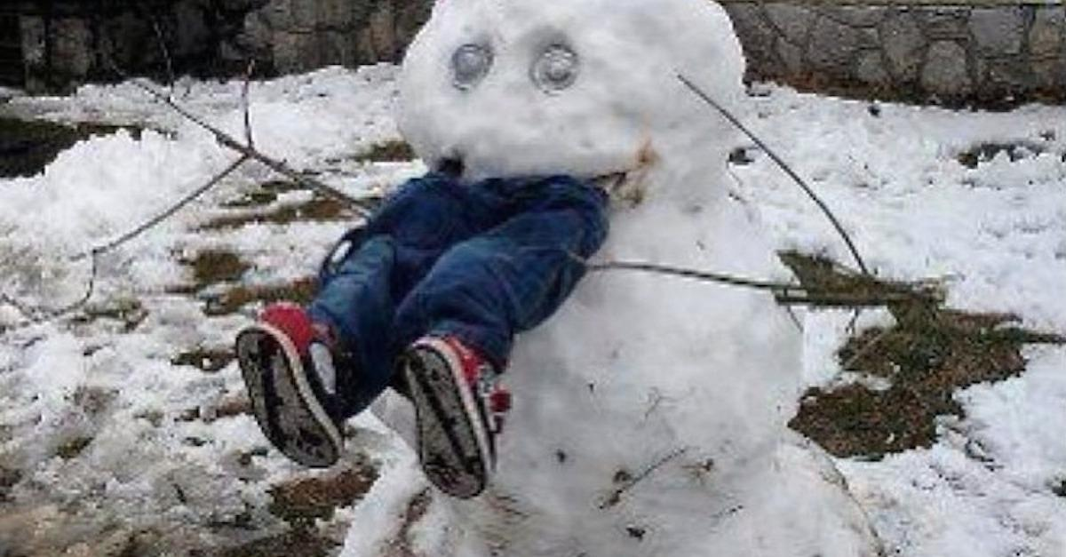 15 People Who Shouldn't Build A Snowman