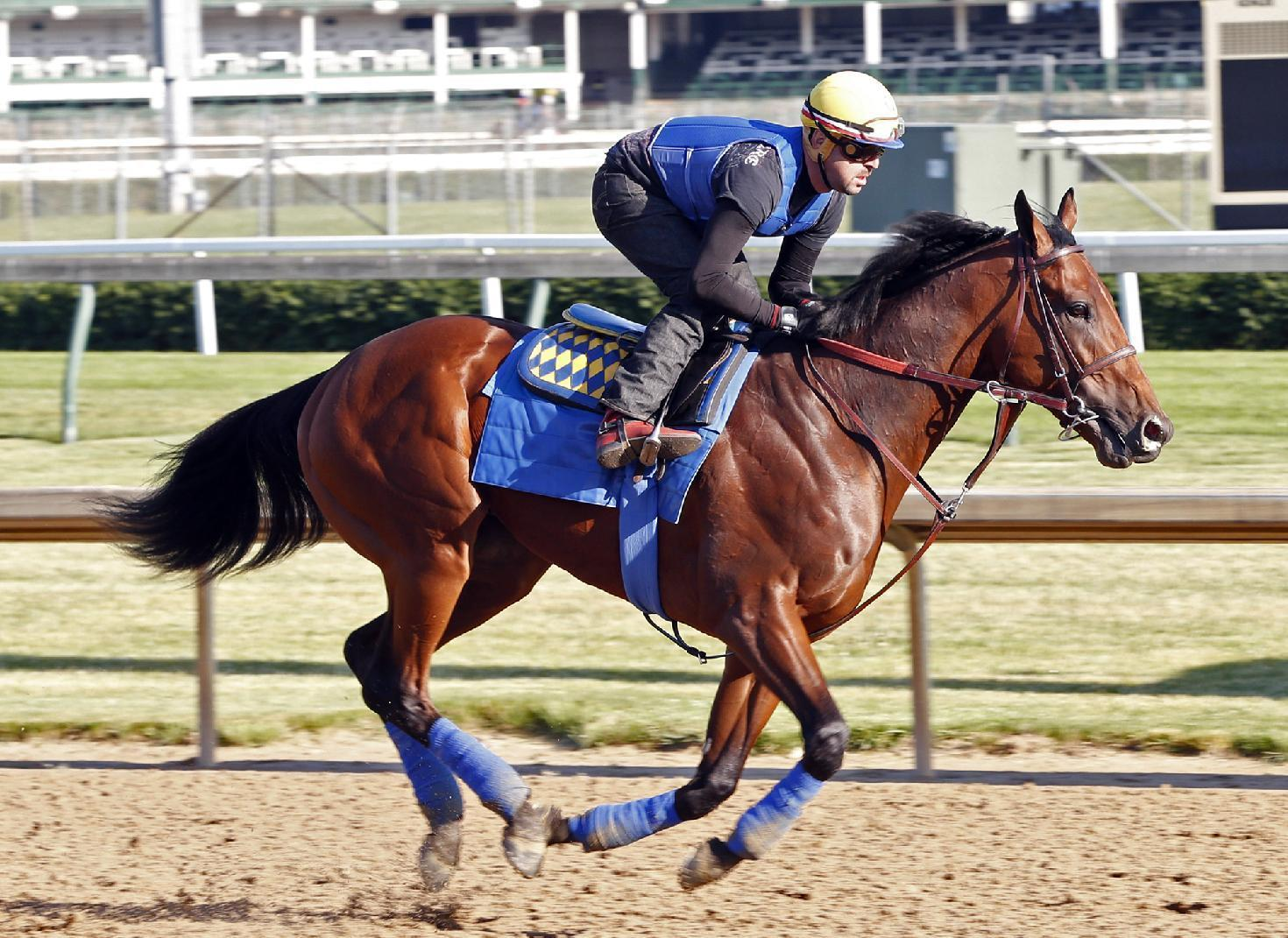 American Pharoah gallops in Kentucky, others work at Belmont